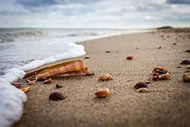 Strand mit Muscheln, Wellen, Meer, Nordsee, Ostfriesland